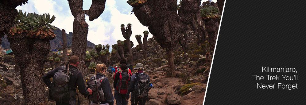 Kilimanjaro-Slider5